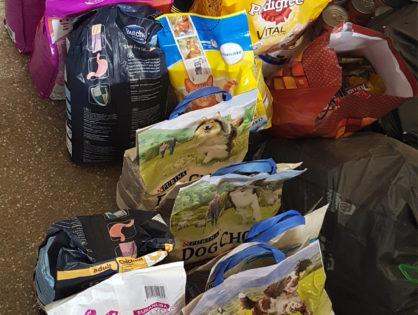 Dziękujemy za zbiórkę karmy dla zwierzaków