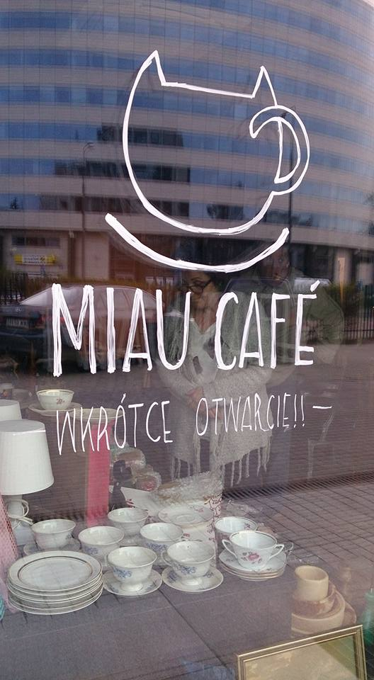 Bazarek dobroczynny w Cafe Miau